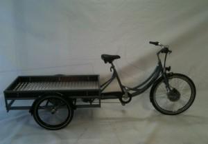 cargo-rand6001
